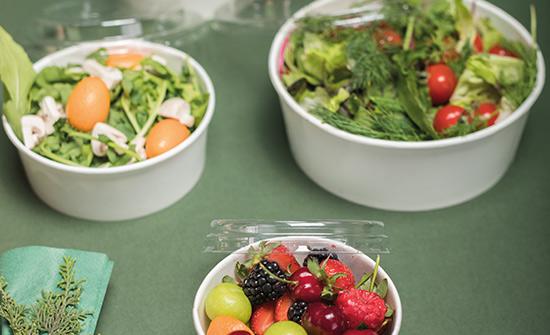 toptan plastik salata ve servis kapları fiyatlar modelleri